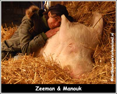 Zeeman & Manouk