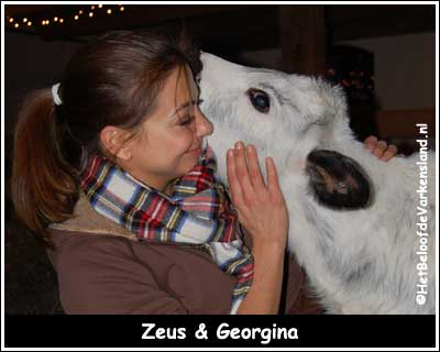 Zeus & Georgina